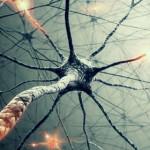 SLA-neuroni