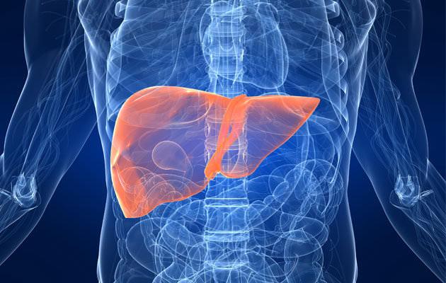 fegato grasso